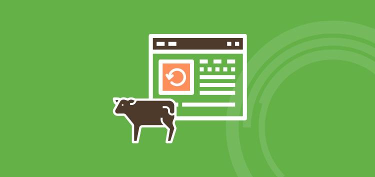 Software para pecuária de corte: quais as vantagens de usar uma solução completa