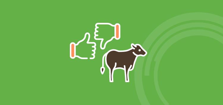 Gerenciamento rural na pecuária: veja como a tecnologia ajuda a diferenciar um bom e um mau produtor